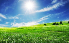 spring: time to detoxify