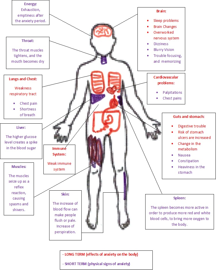 Anxiety Effects Body Chart Healthy By Nature
