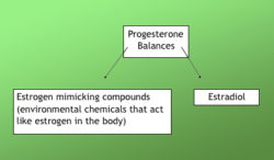 progesterone-balance-diagram-featured